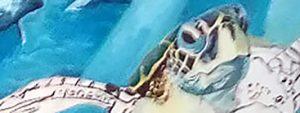 WWF / Centre Villeneuve 2 - Détail du trompe l'œil en cours de réalisation...